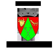 Primaria Vinatori-Neamt